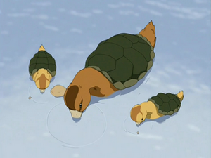 Animals of the Avatar World 300px-Turtle_ducks