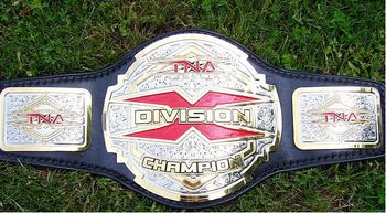 TNA X Divison Championship