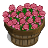 Pink Roses Bushel-icon