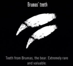 Animals Brumas Teeth
