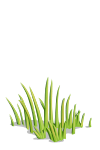 Grass-icon.png