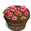 Pink Hibiscus Bushel-icon