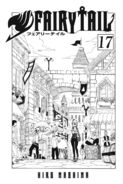 Cover of Volume 17