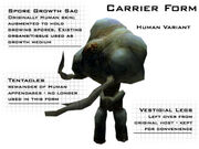 Carrier form Halo CE