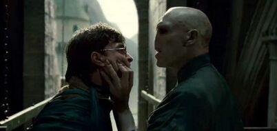 DH - Harry and Voldemort