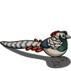 Pheasant-icon