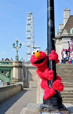 Elmo London 3