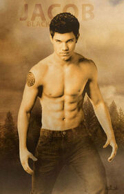 Jacob-black-new-moon-twilight-series-7288928-320-500