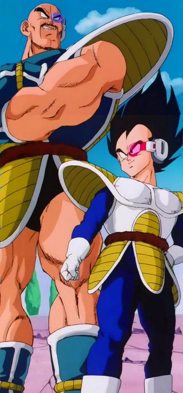 Dragon Ball Z Vegeta and Nappa