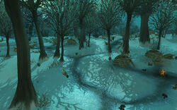 Snowfall Glade