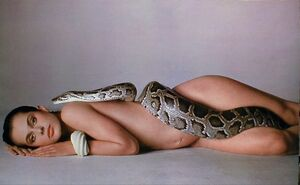 Richard-Avedon&#39;s-Nastassja-Kinski-and-the-Serpent-1981