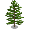 White Pine Tree (decoration)-icon