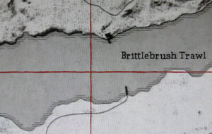 Rdr brittlebrush map