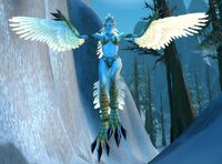 Snowblind Harpy