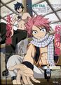 Fairy Tail's Natsu and Gray