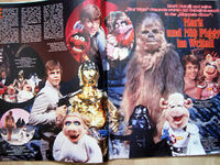BRAVO-StarWarsMuppetsArticle-10-1980