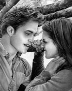 Twilight Edward and Bella by R becca