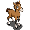 Buckskin Foal-icon