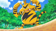 Paul Electabuzz