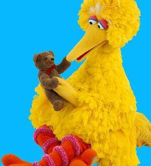 BigBird&amp;Radar-2009