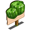 Square Melon Mastery Sign-icon