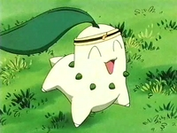 EP120 Chikorita