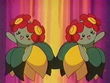 EP124 Bellossom (2)