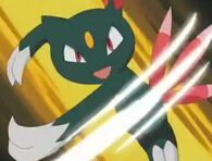 EP267 Sneasel usando Golpes furia