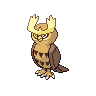 Noctowl NB