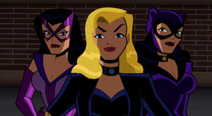 Birds of Prey (The Brave and the Bold)