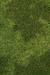 Grass Habitat.PNG