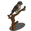 Falcon-icon