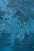 Blue Paint Habitat.png