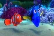 Findingnemo1098