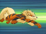 Arcanine-anime