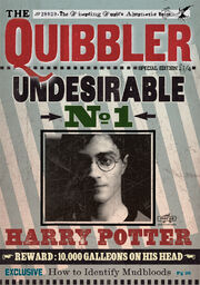 Quibbler