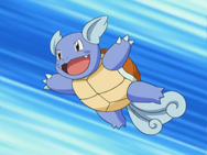 May Wartortle