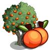 Elberta Peach Tree-icon