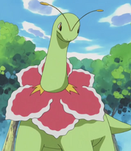 Casey Meganium