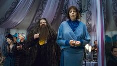Rubeus Hagrid Olympe Maxime D H Wedding 1