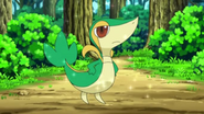 EP669 Snivy de Ash
