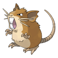 020Raticate