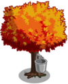 Maple1-icon