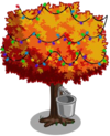 Maple5-icon
