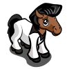 Disco Foal-icon