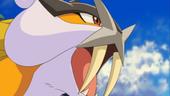 Pokemon shiny 170px-P13_Raikou_brillante