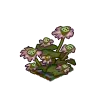Wither Bunch Lotus-icon