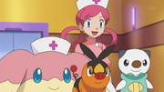 EP675 Tepig y Oshawott con Audino
