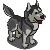 Husky-icon