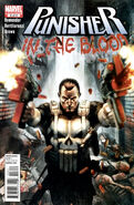 Punisher In the Blood Vol 1 3